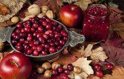 Enjoying Thanksgiving with Bipolar