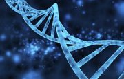Bipolar and Genetic Testing