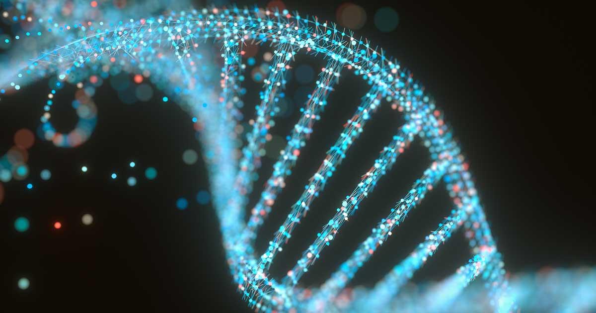 a genetic strand